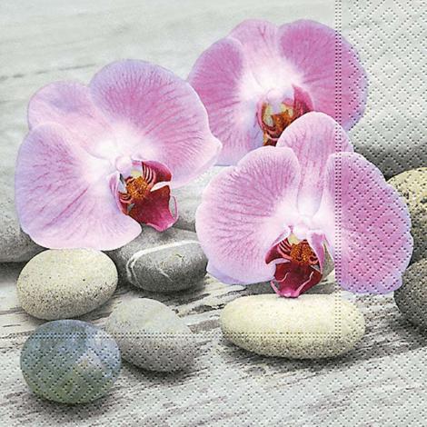 imagem do produto Kit Guardanapos 20 peças Ambiental Paper Orchids On Stones - Catran