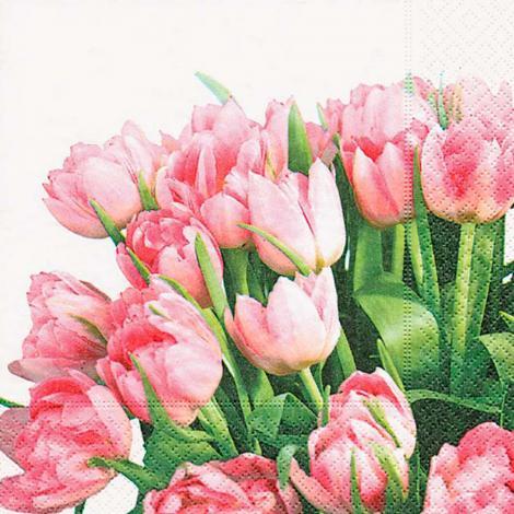 imagem do produto Kit Guardanapos 20 peças Ambiental Paper Tulip Time - Catran